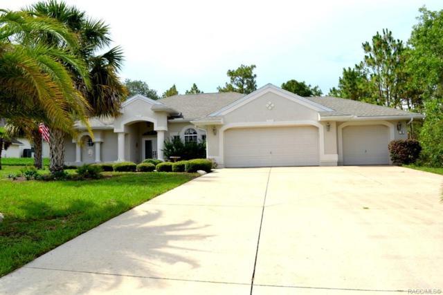 10 Nephthytis Court, Homosassa, FL 34446 (MLS #783738) :: Plantation Realty Inc.