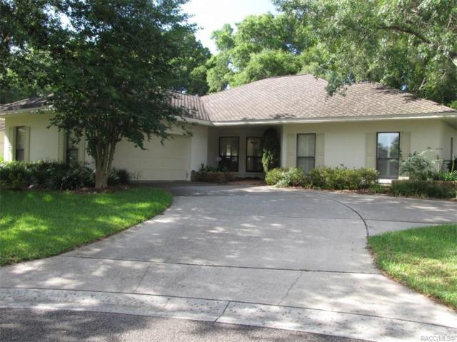 3293 W Wildwood Bay Court, Lecanto, FL 34461 (MLS #783745) :: Plantation Realty Inc.