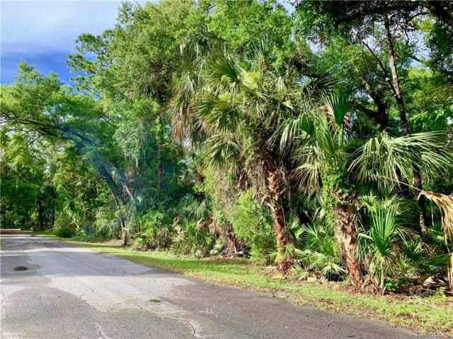 0 55th Street, Other, FL 34498 (MLS #783749) :: Plantation Realty Inc.