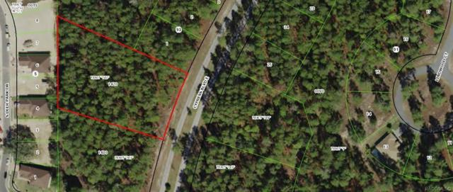 203 Cypress Boulevard E, Homosassa, FL 34446 (MLS #783753) :: Plantation Realty Inc.