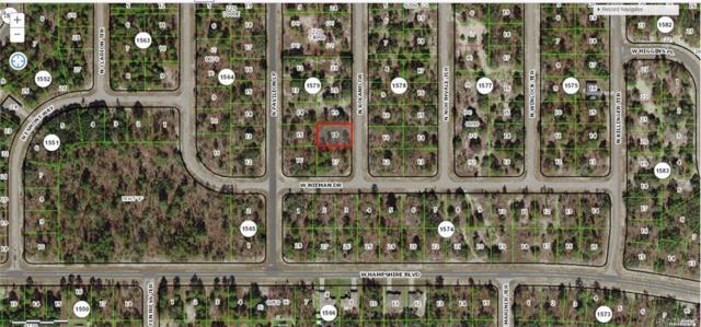 6518 N Roland Drive, Citrus Springs, FL 34433 (MLS #783758) :: Pristine Properties