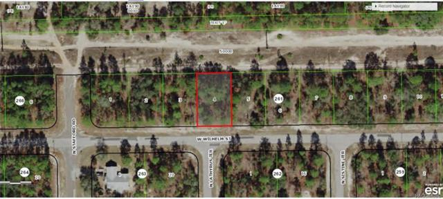 3435 W Wilhelm Street, Citrus Springs, FL 34433 (MLS #783765) :: Pristine Properties