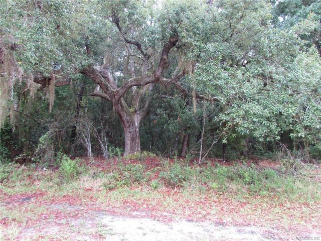 4798 E Spruce Drive, Dunnellon, FL 34434 (MLS #783771) :: Pristine Properties