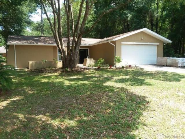 9950 N Sandree Drive, Citrus Springs, FL 34434 (MLS #783781) :: Plantation Realty Inc.