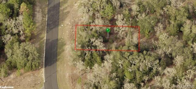 1679 W G Martinelli Boulevard, Citrus Springs, FL 34434 (MLS #783784) :: Plantation Realty Inc.