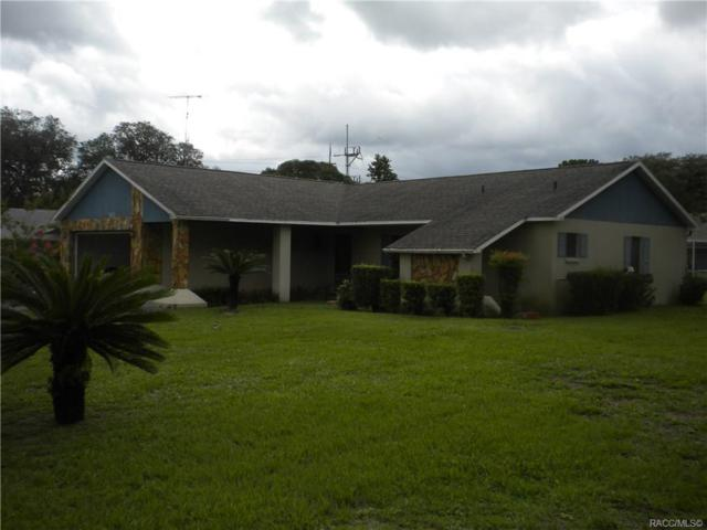 5072 W Kristina Loop, Lecanto, FL 34461 (MLS #783793) :: Plantation Realty Inc.