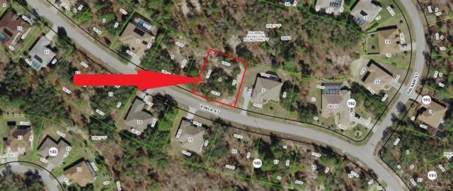 59 Vinca Street, Homosassa, FL 34446 (MLS #783800) :: Plantation Realty Inc.