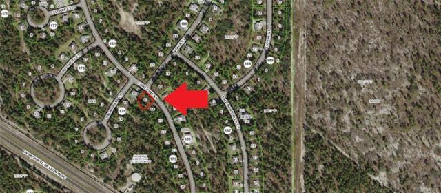 23 Lone Pine Street, Homosassa, FL 34446 (MLS #783804) :: Plantation Realty Inc.
