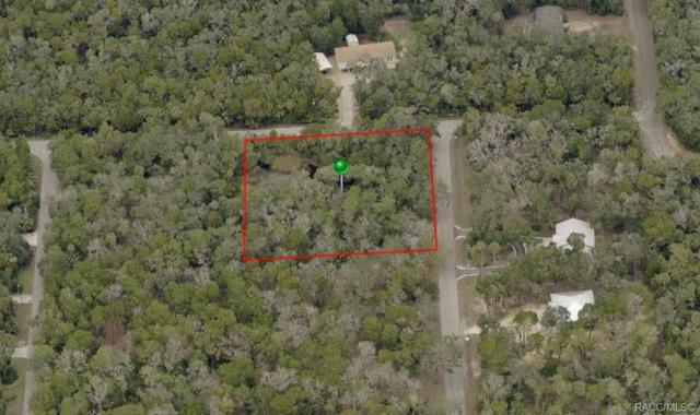 6780 S Haulover Point, Homosassa, FL 34448 (MLS #783805) :: Plantation Realty Inc.