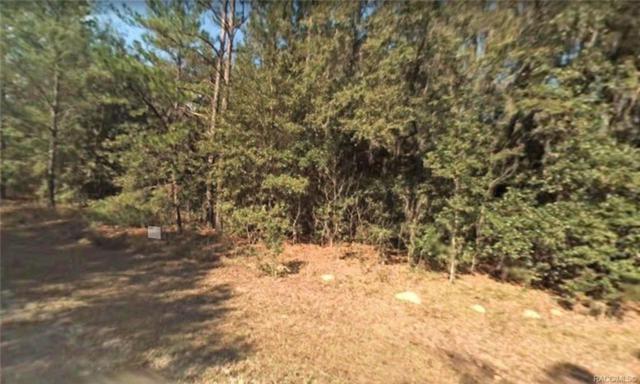 8240 N Escobar Road, Citrus Springs, FL 34434 (MLS #783823) :: Pristine Properties