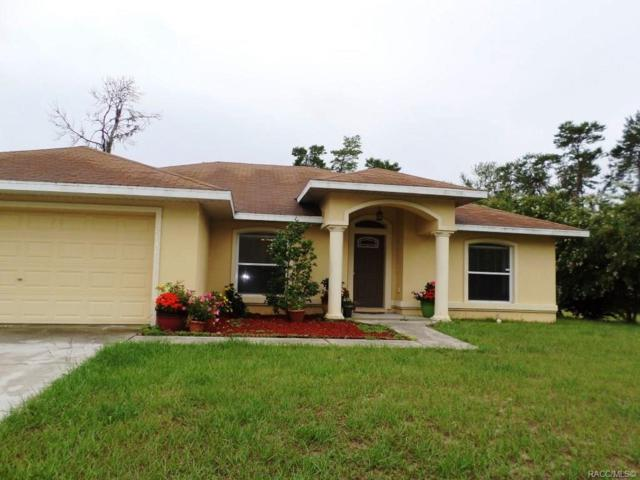 2646 SW 178th Street, Ocala, FL 34473 (MLS #783824) :: Plantation Realty Inc.