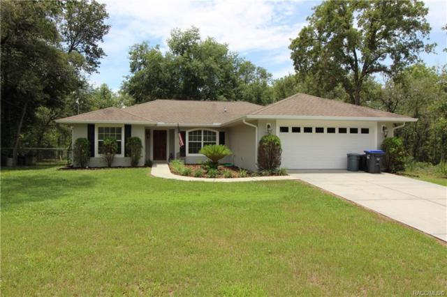 2452 W Dellwood Street, Citrus Springs, FL 34434 (MLS #783829) :: Plantation Realty Inc.