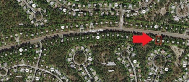 5638 W Oak Park Boulevard, Homosassa, FL 34446 (MLS #783830) :: Plantation Realty Inc.