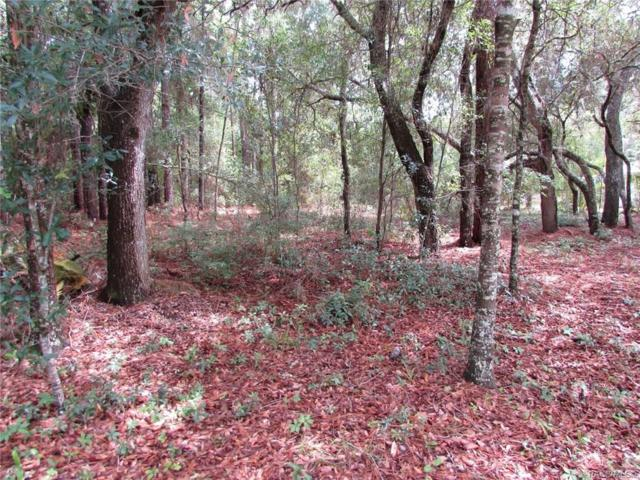 LOT 22 SW 188 Circle, Dunnellon, FL 34432 (MLS #783837) :: Plantation Realty Inc.