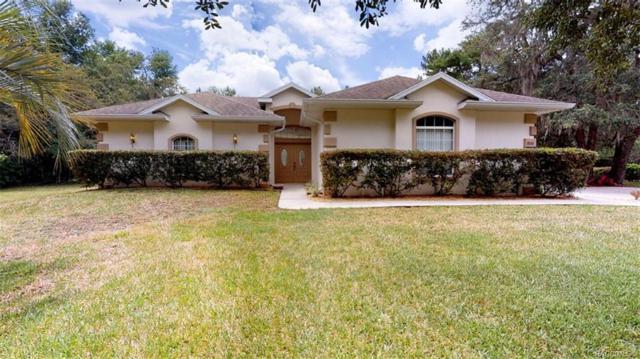 1800 E Tradewind Drive, Hernando, FL 34442 (MLS #783838) :: Plantation Realty Inc.