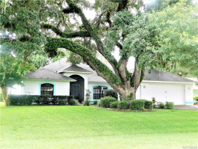 2814 N Canterbury Lake Drive, Hernando, FL 34442 (MLS #783850) :: Plantation Realty Inc.