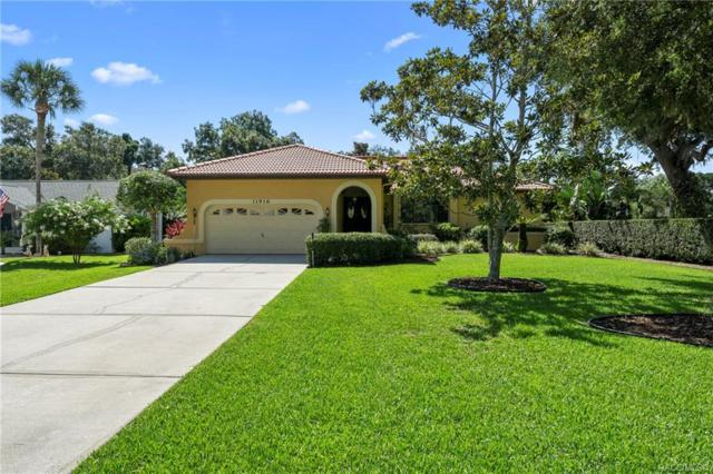 11916 W Riverhaven Drive, Homosassa, FL 34448 (MLS #783853) :: Plantation Realty Inc.