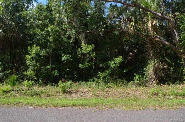 10784 W Galway Lane, Crystal River, FL 34428 (MLS #783861) :: Plantation Realty Inc.