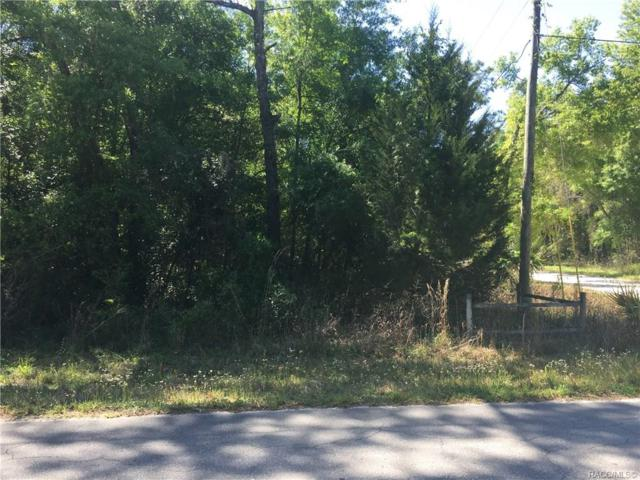 586 N Rooks Avenue, Inverness, FL 34453 (MLS #783862) :: Plantation Realty Inc.