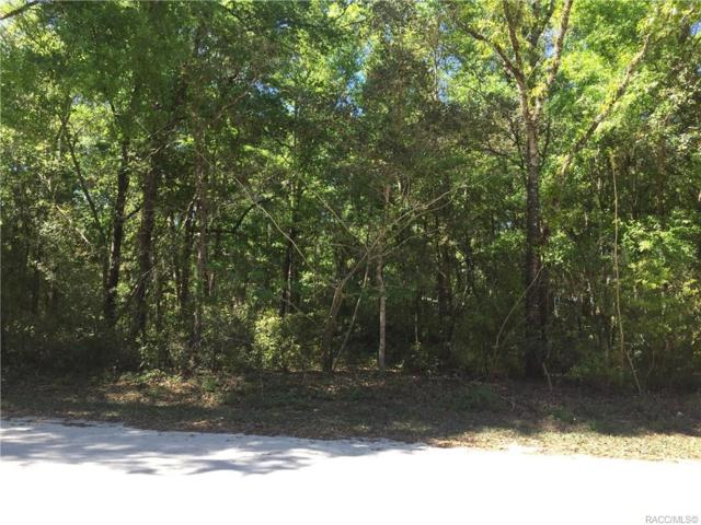 3477 E Bellshire Place, Inverness, FL 34453 (MLS #783864) :: Plantation Realty Inc.