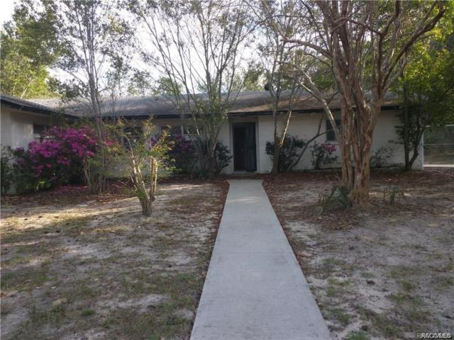 23288 SW Green Bay Drive, Dunnellon, FL 34431 (MLS #783867) :: Plantation Realty Inc.