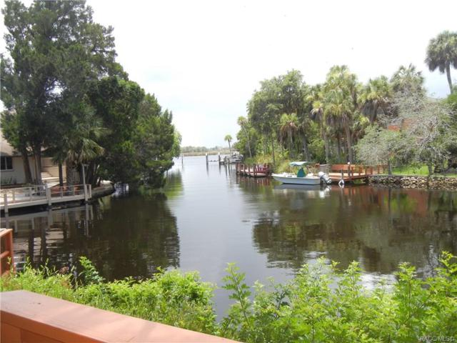 5218 S Spy Glass Point, Homosassa, FL 34448 (MLS #783884) :: Plantation Realty Inc.