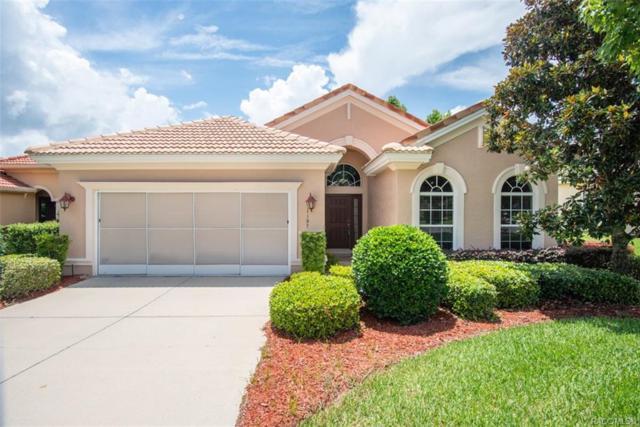 1197 W Diamond Shore Loop, Hernando, FL 34442 (MLS #783887) :: Pristine Properties