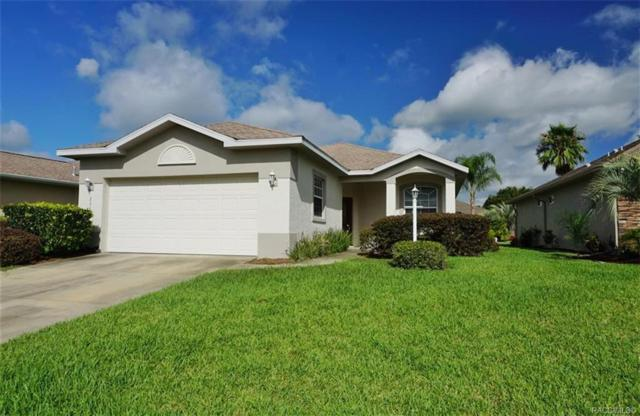 2344 N Andrea Point, Lecanto, FL 34461 (MLS #783898) :: Pristine Properties
