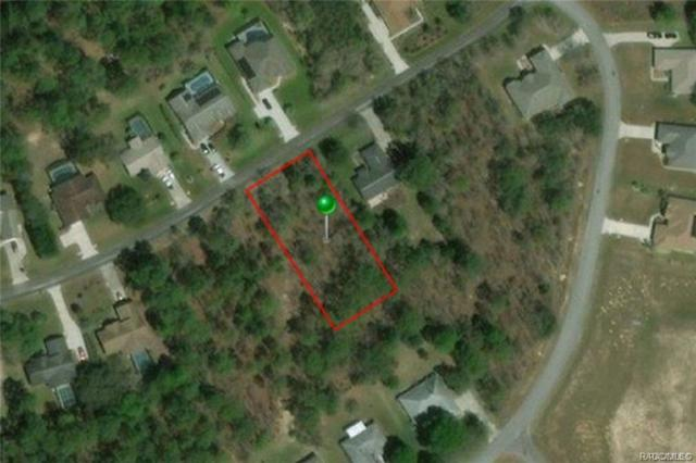 1774 E Monopoly Loop, Inverness, FL 34453 (MLS #783903) :: Plantation Realty Inc.