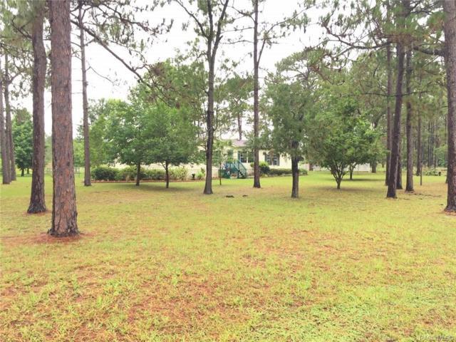 2350 S Wakulla Point, Homosassa, FL 34448 (MLS #783904) :: Pristine Properties