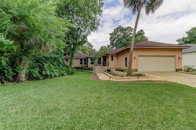 11486 W Waterway Drive, Homosassa, FL 34448 (MLS #783906) :: Plantation Realty Inc.