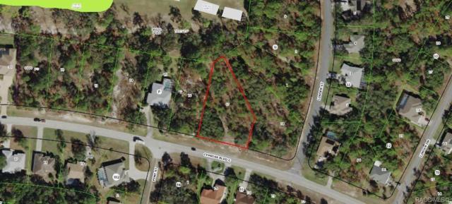 46 Cypress Boulevard E, Homosassa, FL 34446 (MLS #783908) :: Pristine Properties