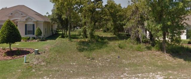 44 Deerwood Drive, Homosassa, FL 34446 (MLS #783916) :: Plantation Realty Inc.