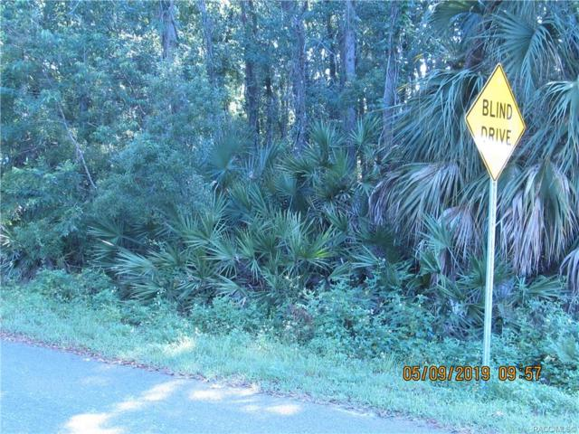 6748 W Linden Drive, Homosassa, FL 34446 (MLS #783918) :: Plantation Realty Inc.