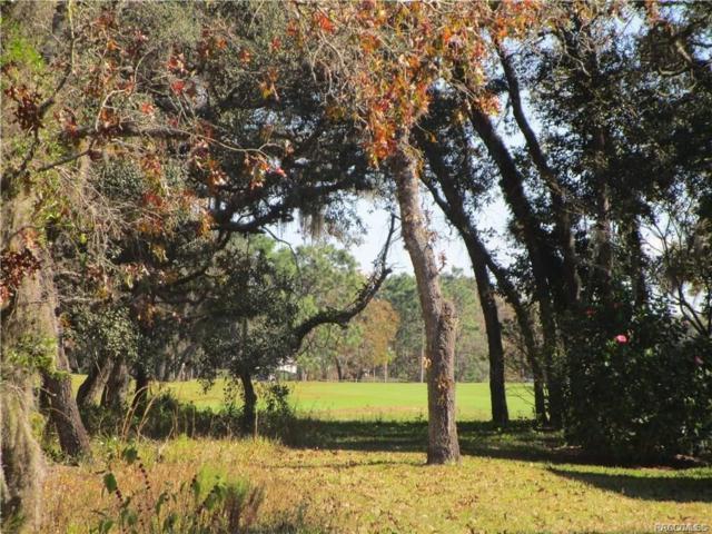 50 Deerwood Drive, Homosassa, FL 34446 (MLS #783919) :: Plantation Realty Inc.