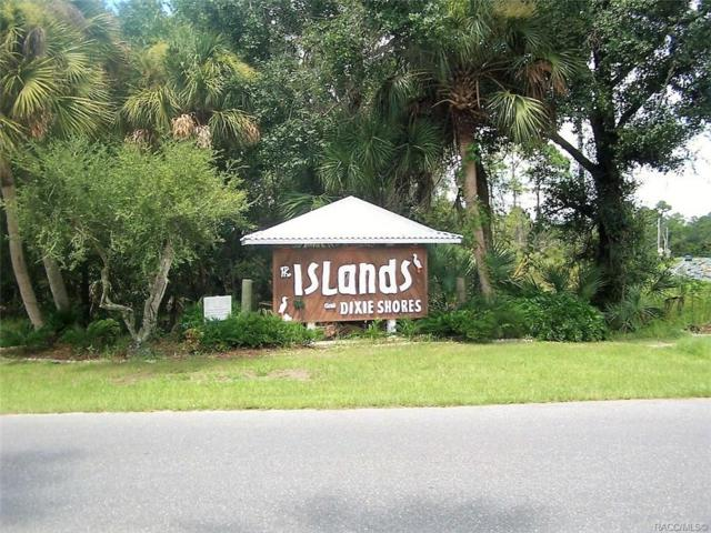 1280 N Seagull Point, Crystal River, FL 34429 (MLS #783933) :: Pristine Properties