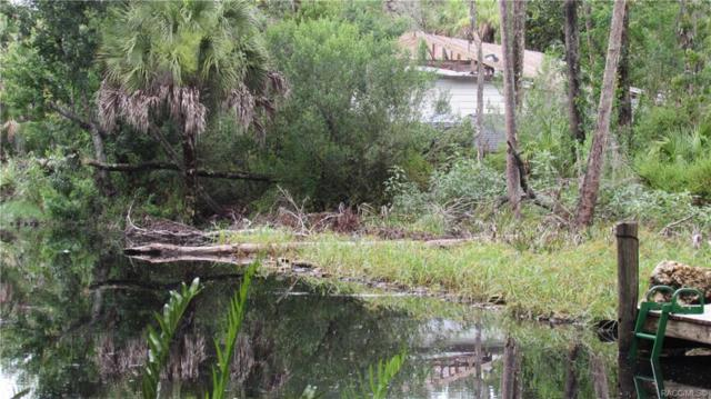 10514 W New York Street, Homosassa, FL 34448 (MLS #783937) :: Plantation Realty Inc.