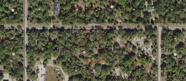12502 W Cornflower Drive, Crystal River, FL 34428 (MLS #783947) :: Plantation Realty Inc.