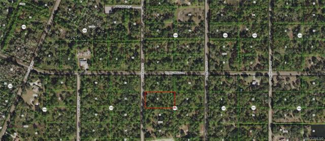 9157 N Bonsai Avenue, Crystal River, FL 34428 (MLS #783955) :: Plantation Realty Inc.
