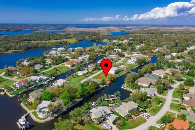 5189 S Mystic Point, Homosassa, FL 34448 (MLS #783959) :: Plantation Realty Inc.