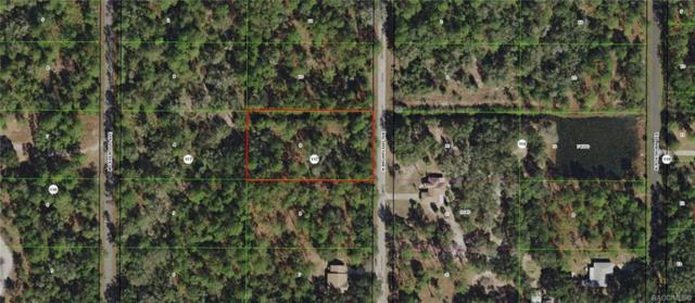 9088 N Bromeliad Terrace, Crystal River, FL 34428 (MLS #783996) :: Plantation Realty Inc.
