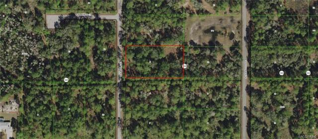 9287 N Bonsai Avenue, Crystal River, FL 34428 (MLS #783997) :: Plantation Realty Inc.