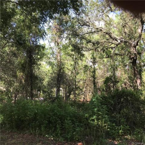 44 Cypress Boulevard E, Homosassa, FL 34446 (MLS #784006) :: Plantation Realty Inc.