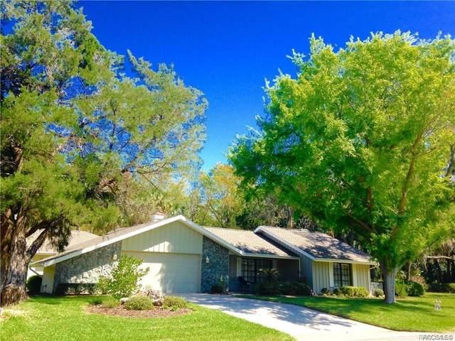 5 Redbay Court W, Homosassa, FL 34446 (MLS #784022) :: Plantation Realty Inc.