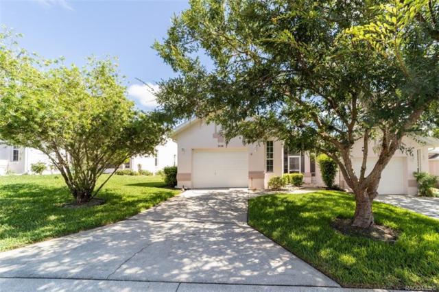 3528 S Belgrave Drive, Inverness, FL 34452 (MLS #784069) :: Pristine Properties
