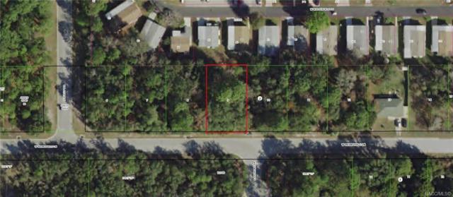 7071 W Merrivale Lane, Homosassa, FL 34446 (MLS #784078) :: Plantation Realty Inc.