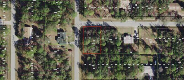 3016 E Anderson Street, Inverness, FL 34453 (MLS #784080) :: Plantation Realty Inc.