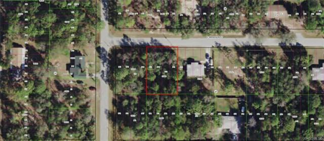 3032 E Anderson Street, Inverness, FL 34453 (MLS #784082) :: Plantation Realty Inc.