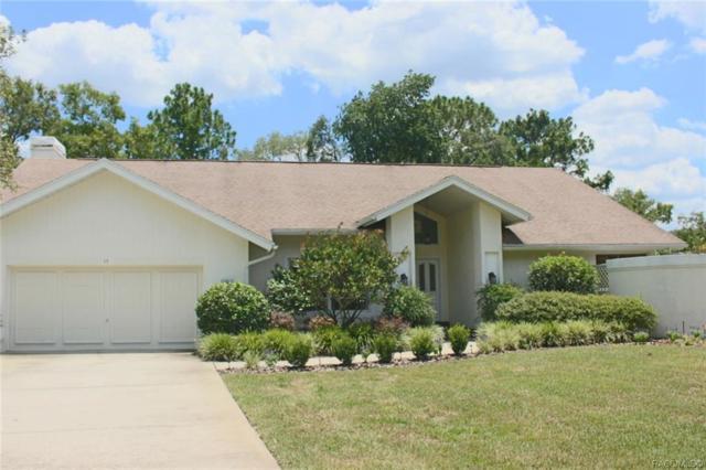 15 Viburnum Court, Homosassa, FL 34446 (MLS #784110) :: Plantation Realty Inc.