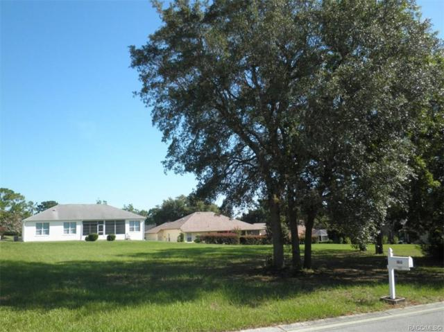 181 W Clifton Place, Beverly Hills, FL 34465 (MLS #784151) :: Plantation Realty Inc.